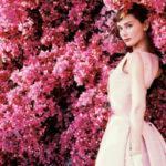 Rosa, il colore dalle molteplici anime