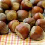 Marrone, resilienza, nutrimento, cioccolata e il Dosha Kapha