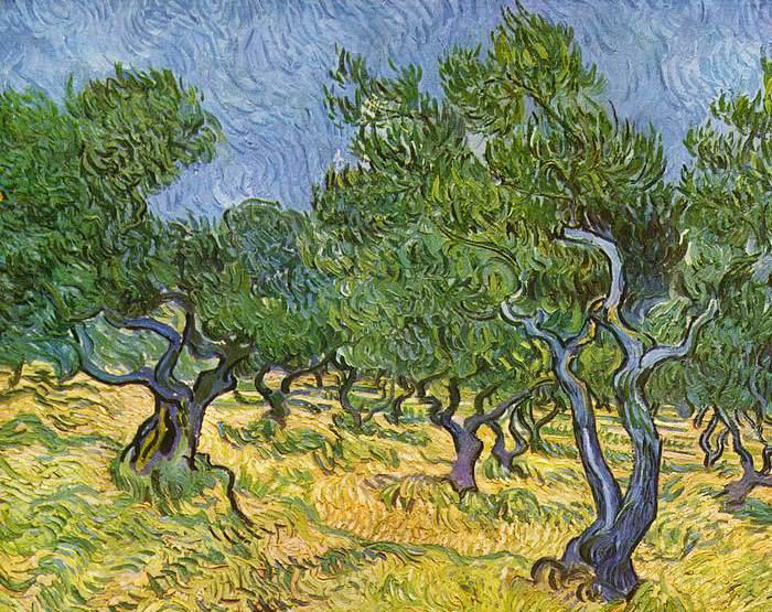 ulivi Van Gogh